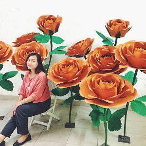 Hoa backdrop Hải Phòng