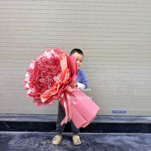 Hoa bi khô Hải Phòng